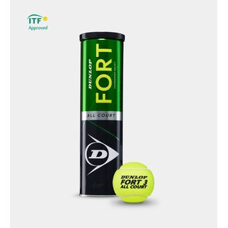 DUNLOP FORT ALL COURT TS TUBO DA 4 PALLINE